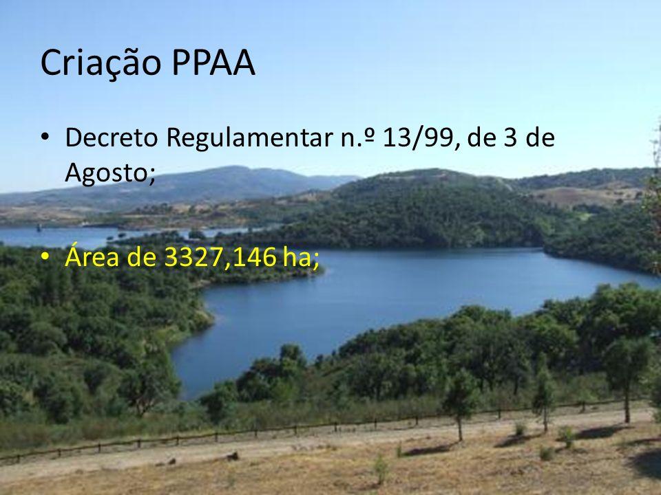 Criação PPAA Decreto Regulamentar n.º 13/99, de 3 de Agosto;
