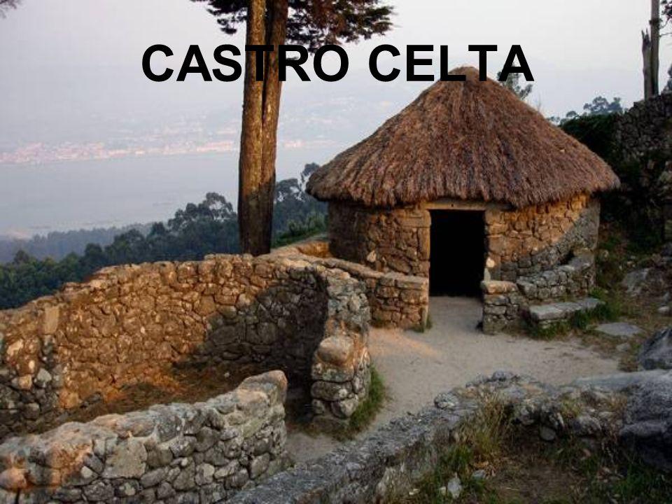 CASTRO CELTA