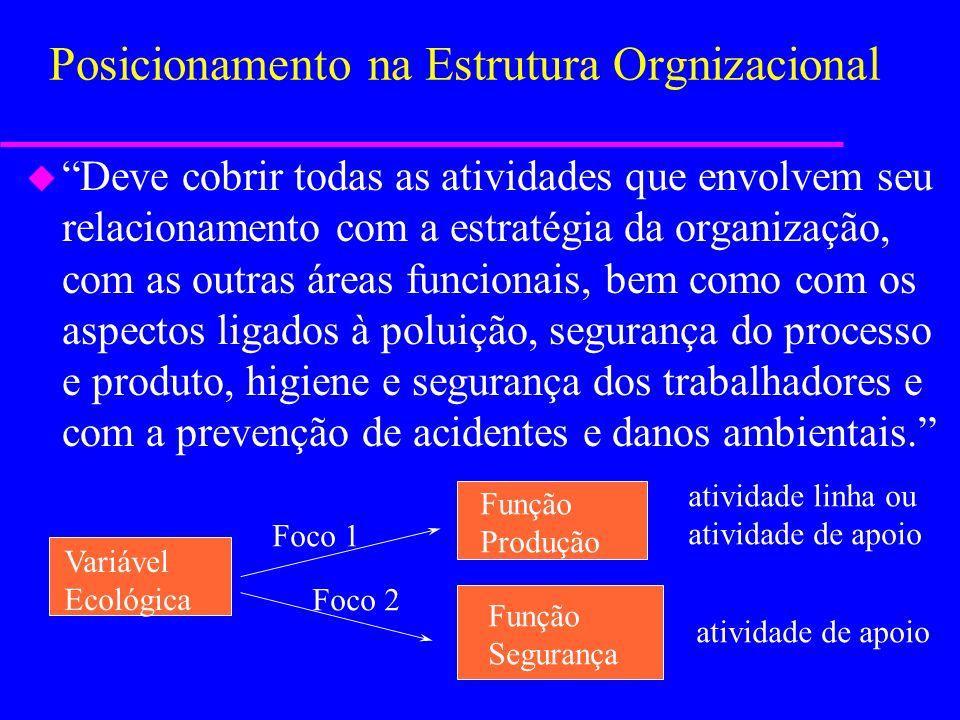 Posicionamento na Estrutura Orgnizacional