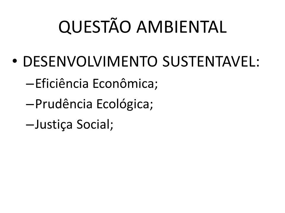 QUESTÃO AMBIENTAL DESENVOLVIMENTO SUSTENTAVEL: Eficiência Econômica;
