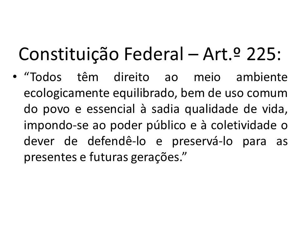 Constituição Federal – Art.º 225: