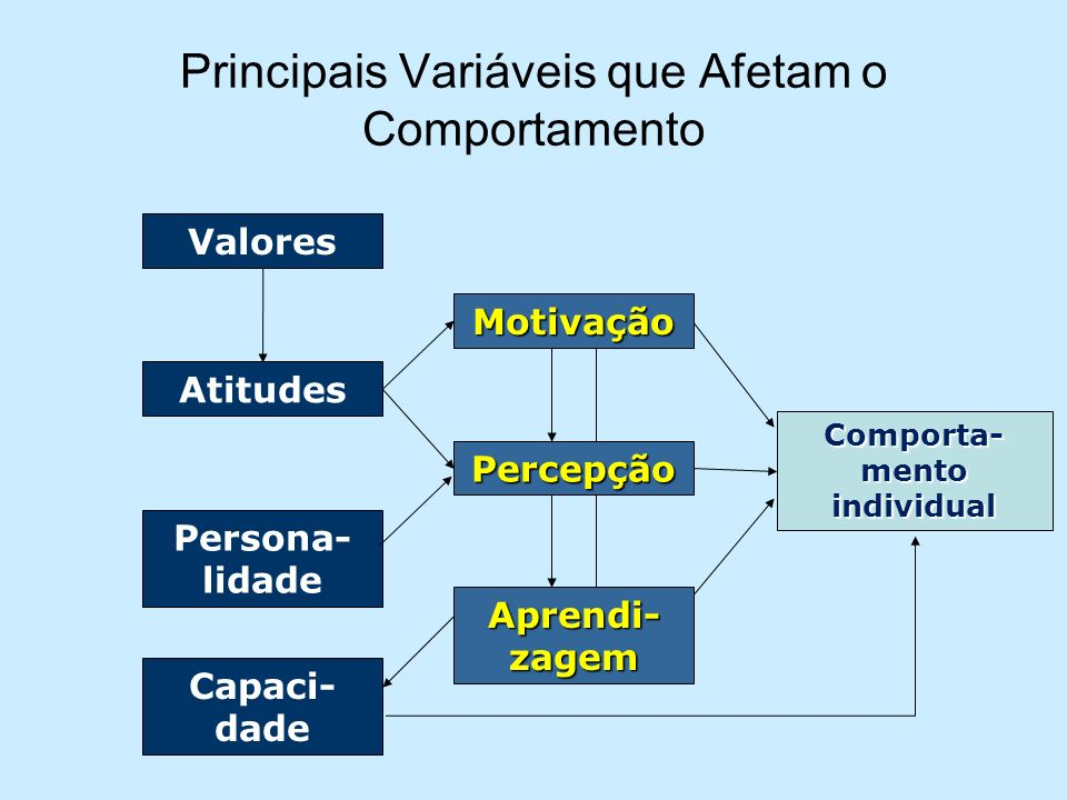 Principais Variáveis que Afetam o Comportamento
