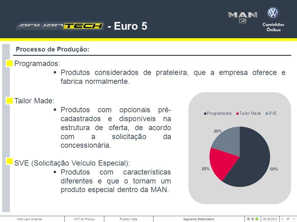 - Euro 5 Processo de Produção: Programados: Produtos considerados de prateleira, que a empresa oferece e fabrica normalmente.