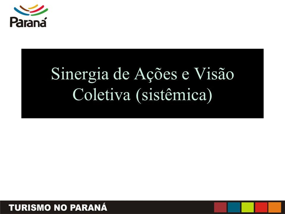 Sinergia de Ações e Visão Coletiva (sistêmica)