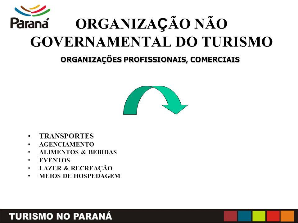 ORGANIZAÇÃO NÃO GOVERNAMENTAL DO TURISMO