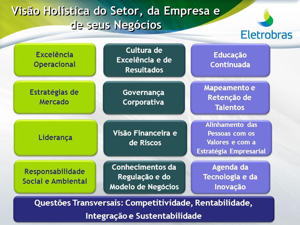 Visão Holística do Setor, da Empresa e de seus Negócios