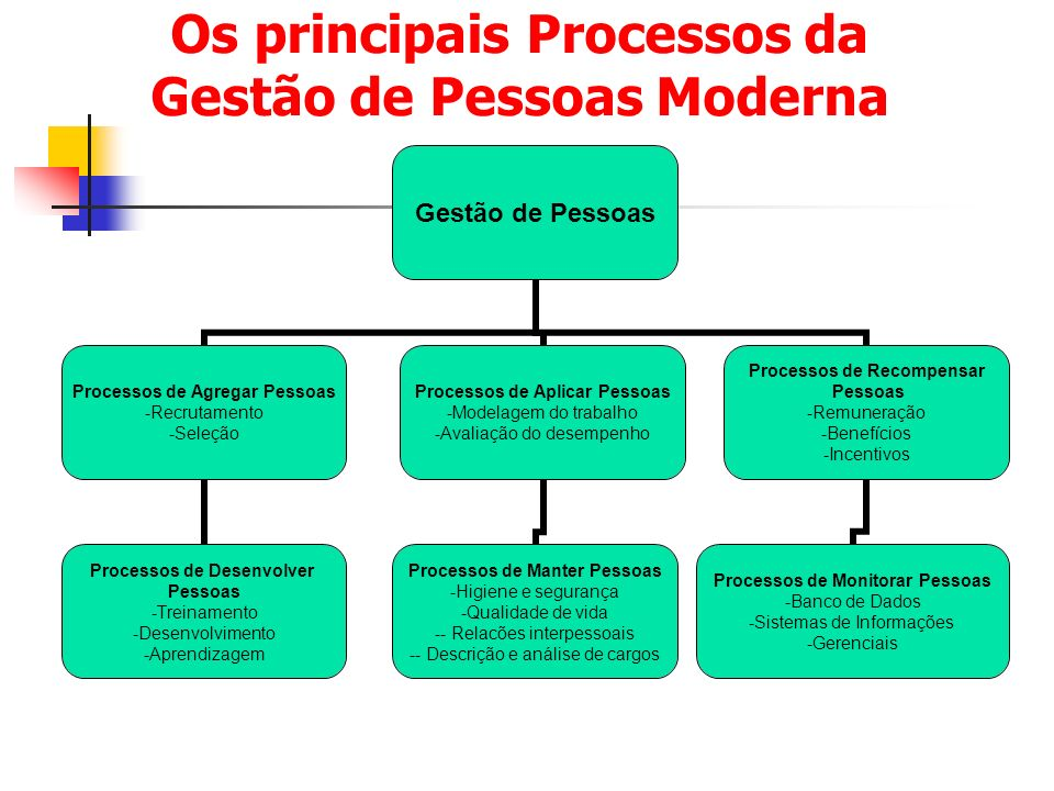 Os principais Processos da Gestão de Pessoas Moderna