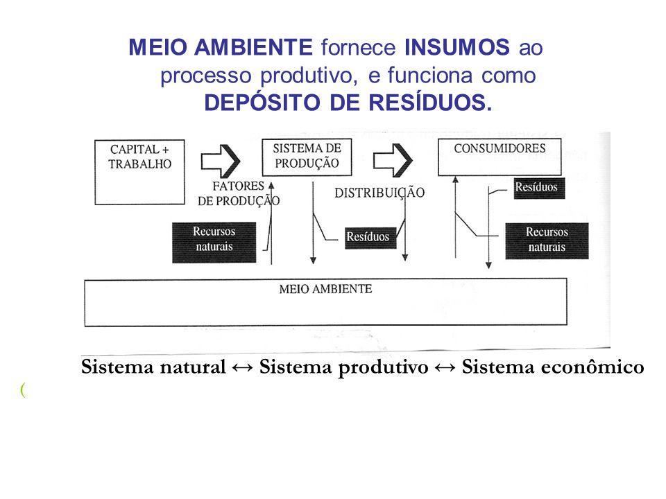 MEIO AMBIENTE fornece INSUMOS ao processo produtivo, e funciona como DEPÓSITO DE RESÍDUOS.