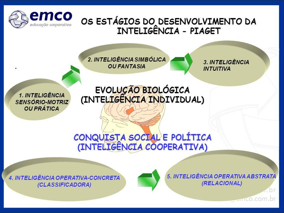 OS ESTÁGIOS DO DESENVOLVIMENTO DA INTELIGÊNCIA - PIAGET