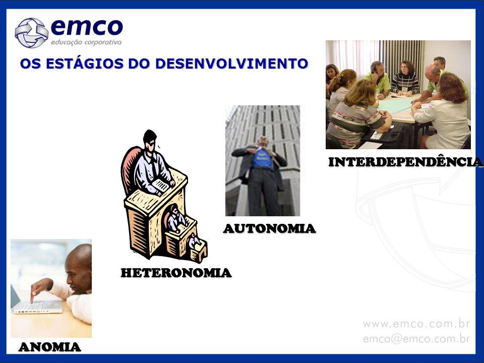 OS ESTÁGIOS DO DESENVOLVIMENTO