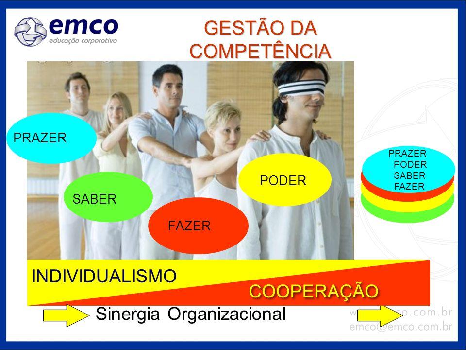 GESTÃO DA COMPETÊNCIA INDIVIDUALISMO COOPERAÇÃO
