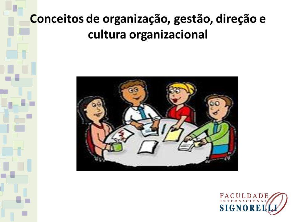 Conceitos de organização, gestão, direção e cultura organizacional