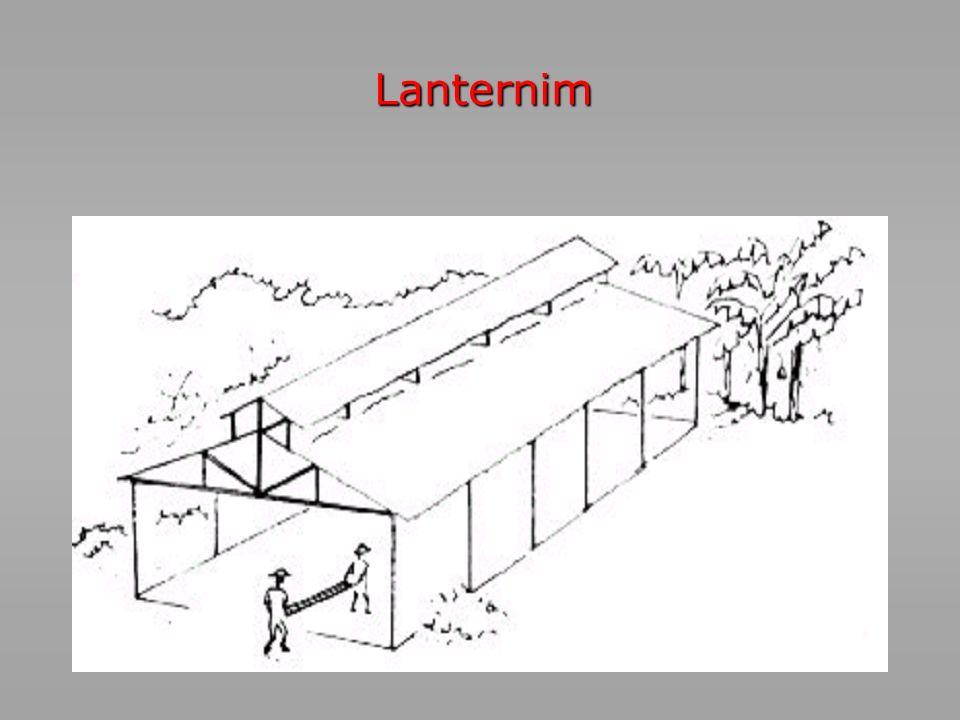 Lanternim 7