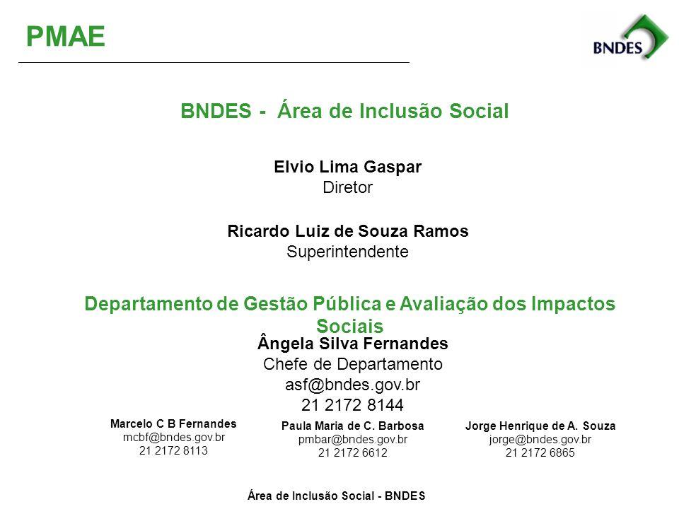 PMAE BNDES - Área de Inclusão Social