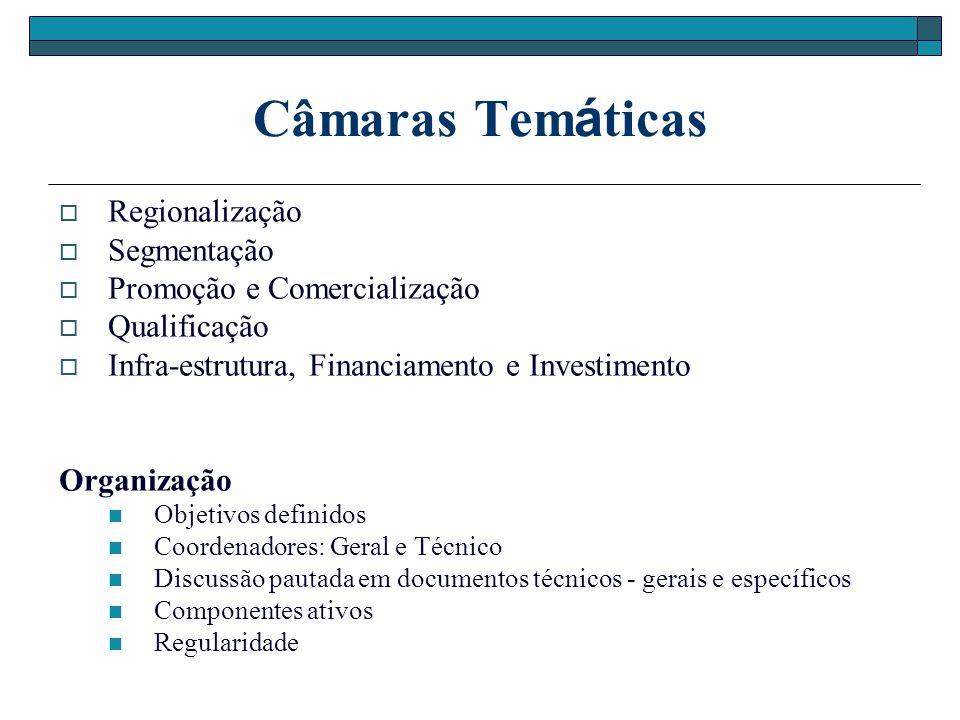 Câmaras Temáticas Regionalização Segmentação