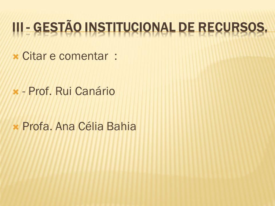III - Gestão Institucional de Recursos.