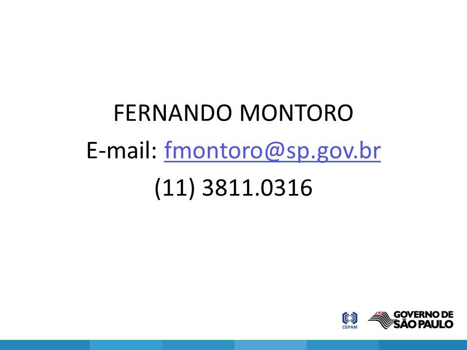 E-mail: fmontoro@sp.gov.br