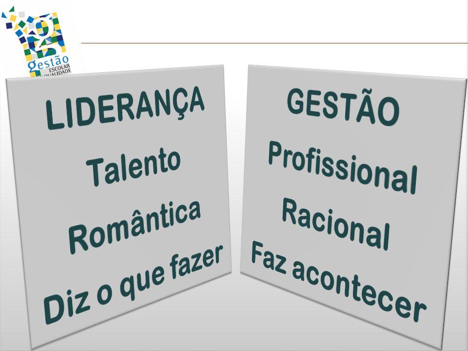 LIDERANÇA Talento Romântica Diz o que fazer GESTÃO Profissional Racional Faz acontecer