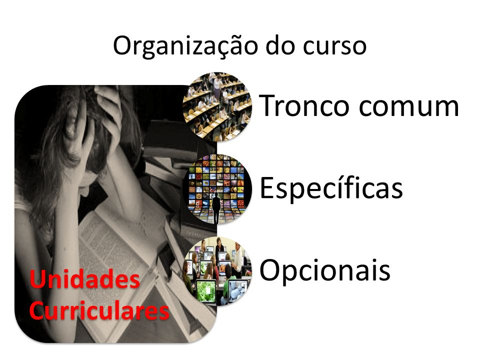 Tronco comum Específicas Opcionais Organização do curso