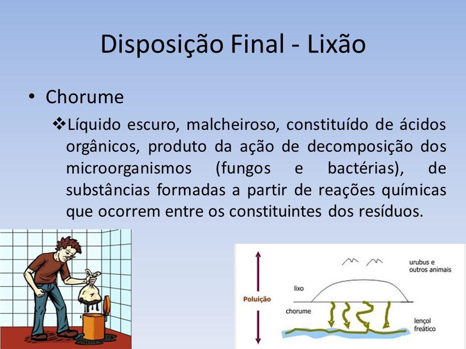 Disposição Final - Lixão