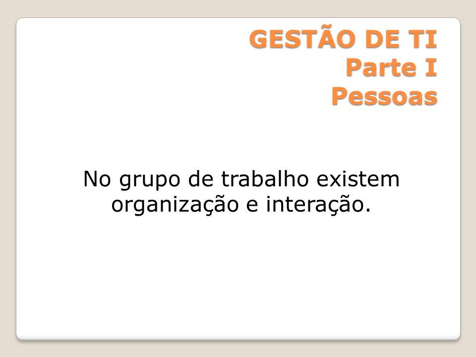 No grupo de trabalho existem organização e interação.