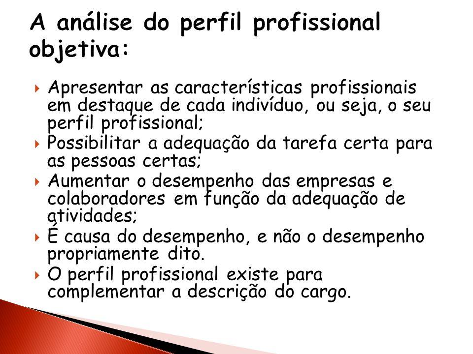 A análise do perfil profissional objetiva: