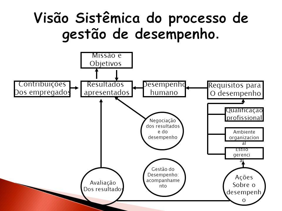 Visão Sistêmica do processo de gestão de desempenho.