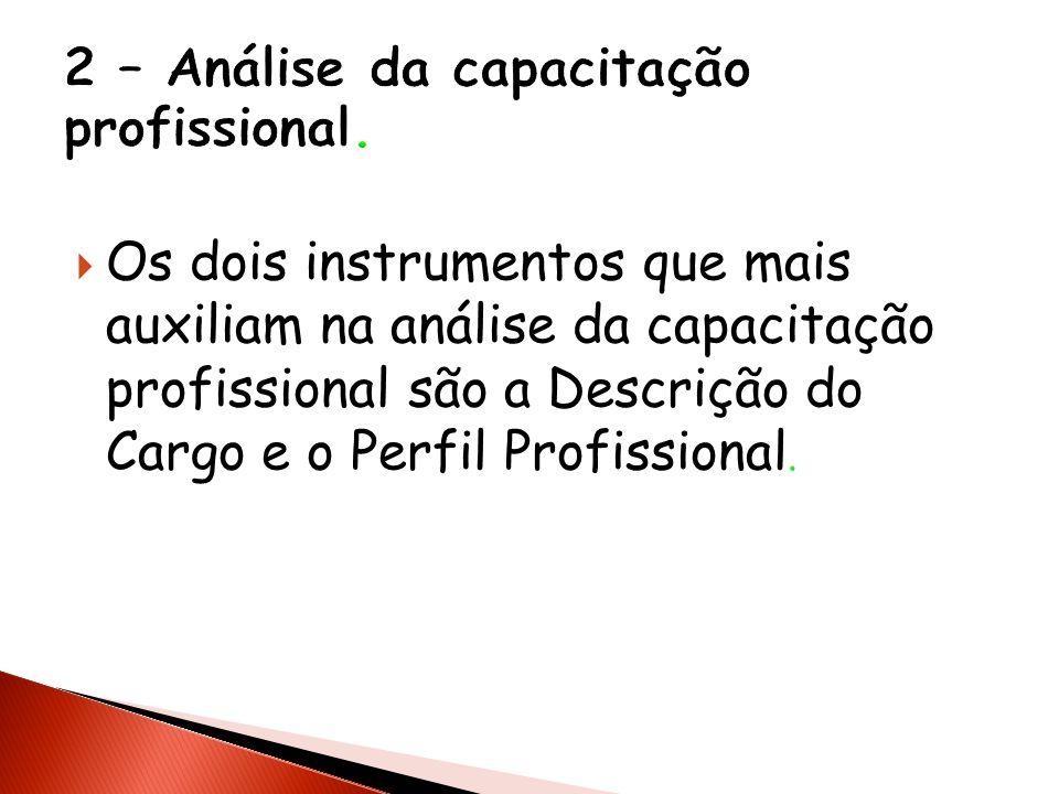 2 – Análise da capacitação profissional.