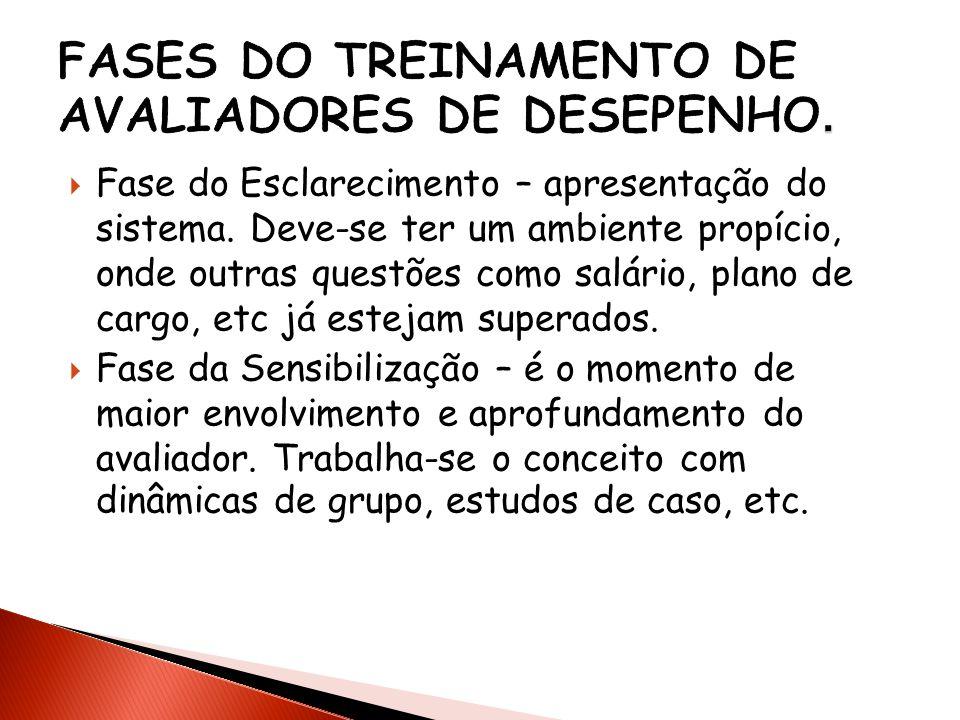FASES DO TREINAMENTO DE AVALIADORES DE DESEPENHO.
