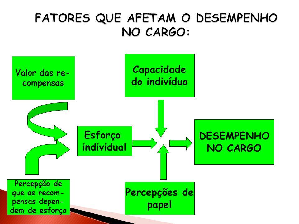 FATORES QUE AFETAM O DESEMPENHO NO CARGO: