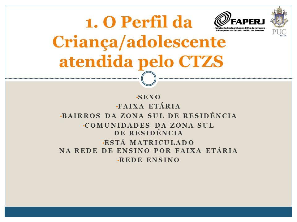 1. O Perfil da Criança/adolescente atendida pelo CTZS