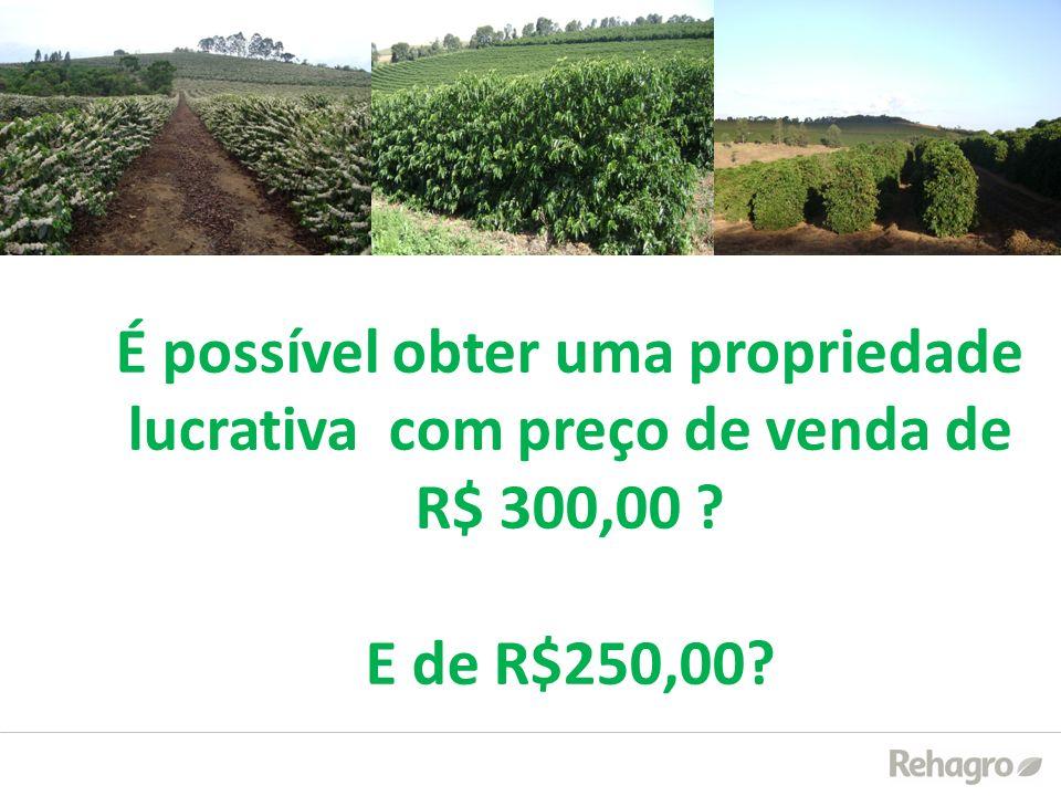 É possível obter uma propriedade lucrativa com preço de venda de R$ 300,00