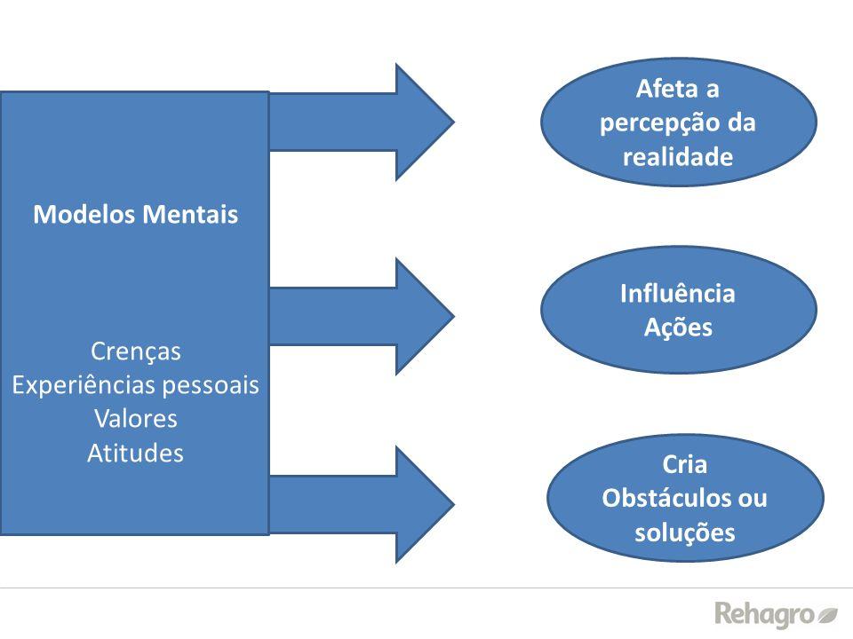 Afeta a percepção da realidade Cria Obstáculos ou soluções