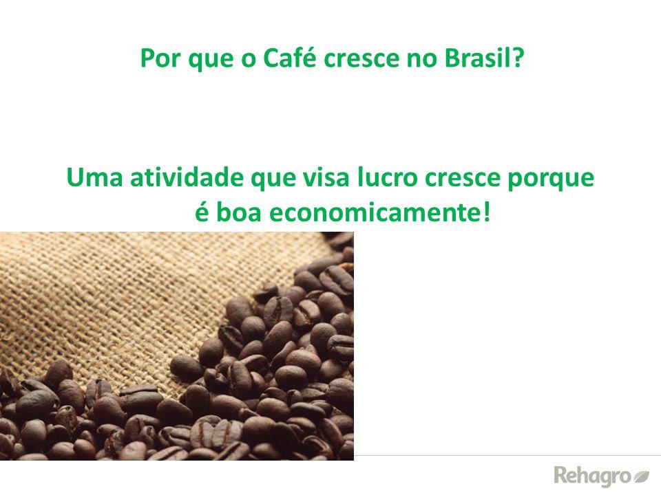 Por que o Café cresce no Brasil