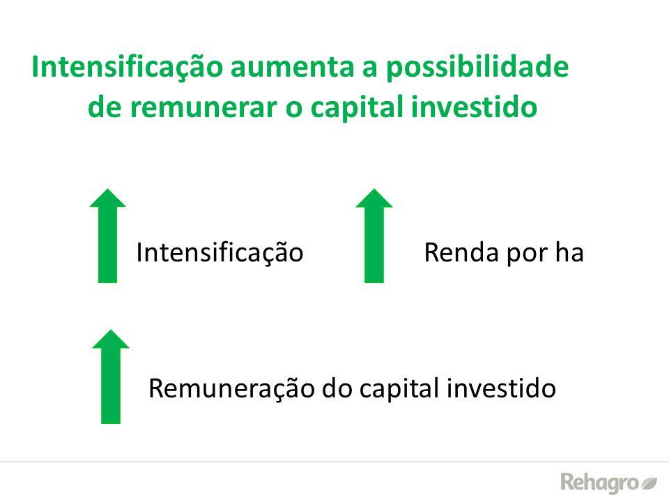 Intensificação aumenta a possibilidade de remunerar o capital investido