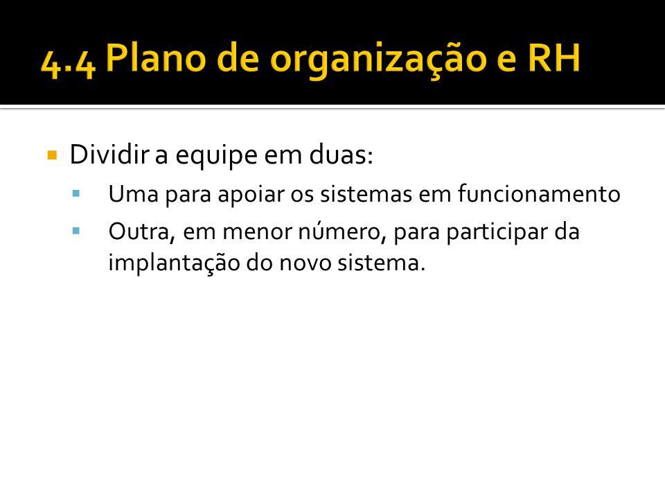 4.4 Plano de organização e RH