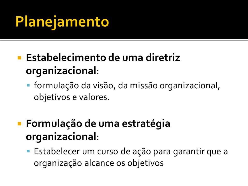 Planejamento Estabelecimento de uma diretriz organizacional: