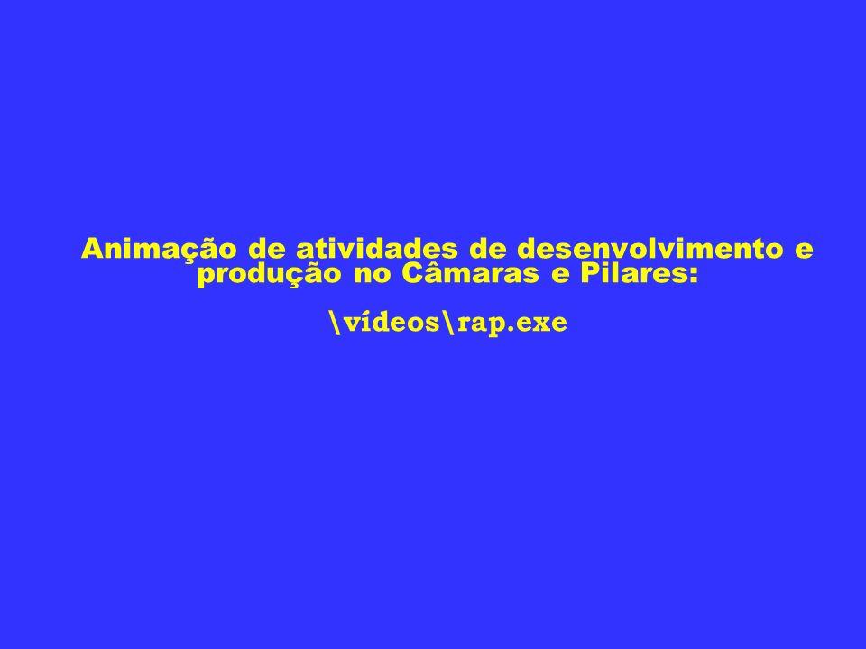 Animação de atividades de desenvolvimento e produção no Câmaras e Pilares: \vídeos\rap.exe