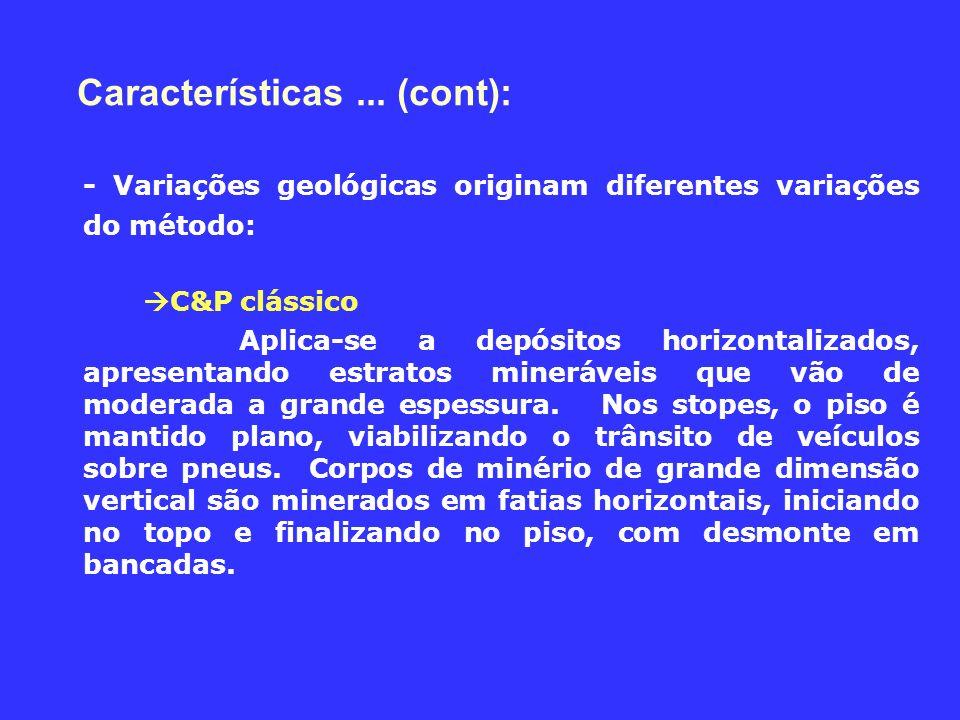 Características ... (cont):