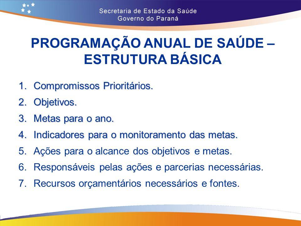 PROGRAMAÇÃO ANUAL DE SAÚDE – ESTRUTURA BÁSICA