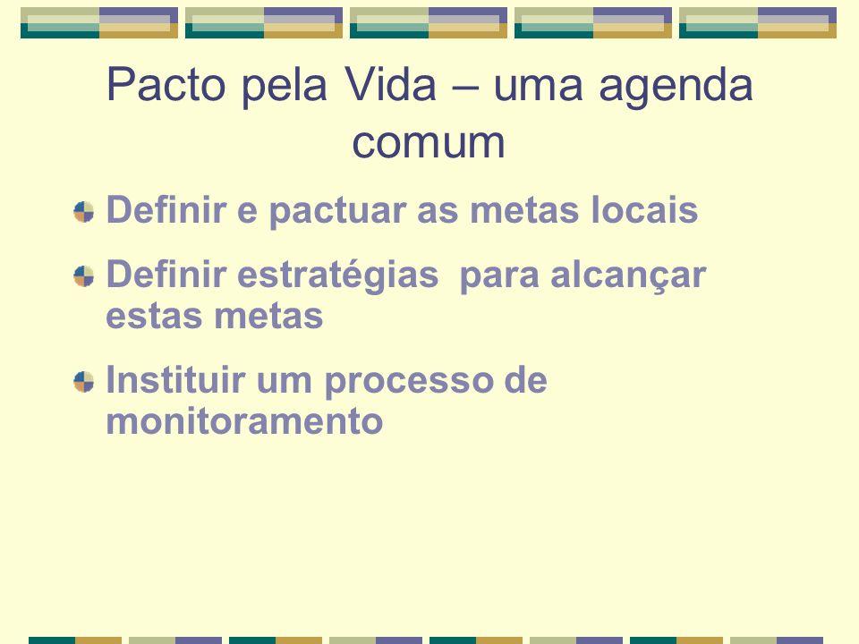 Pacto pela Vida – uma agenda comum