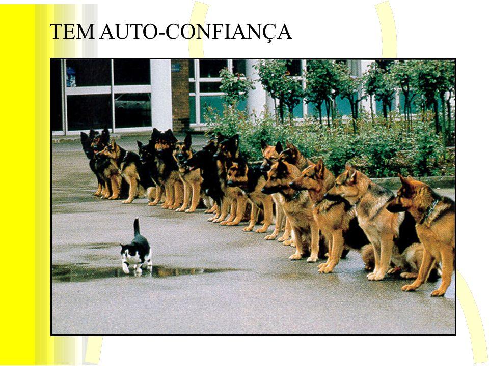 TEM AUTO-CONFIANÇA