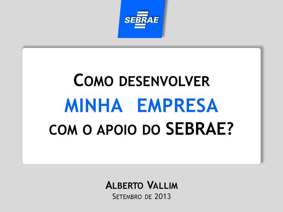 minha empresa Como desenvolver com o apoio do SEBRAE Alberto Vallim