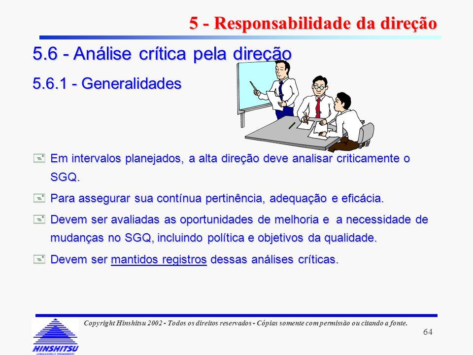 5 - Responsabilidade da direção