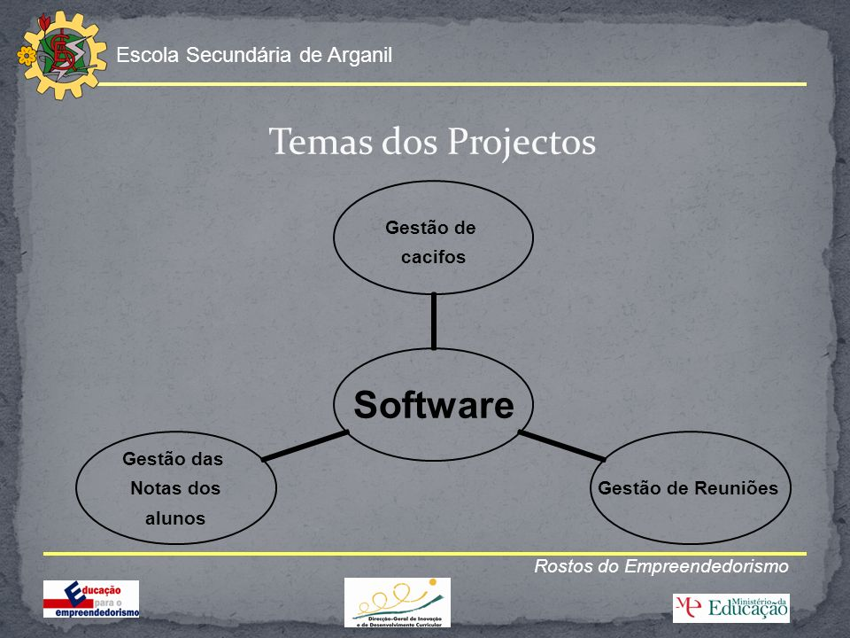 Temas dos Projectos Rostos do Empreendedorismo