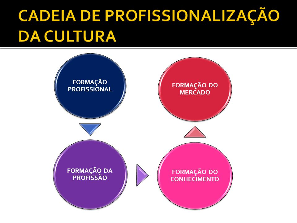 CADEIA DE PROFISSIONALIZAÇÃO DA CULTURA