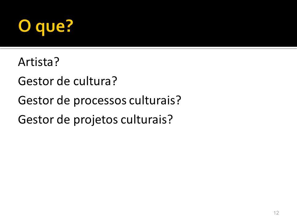 O que O que Artista Gestor de cultura