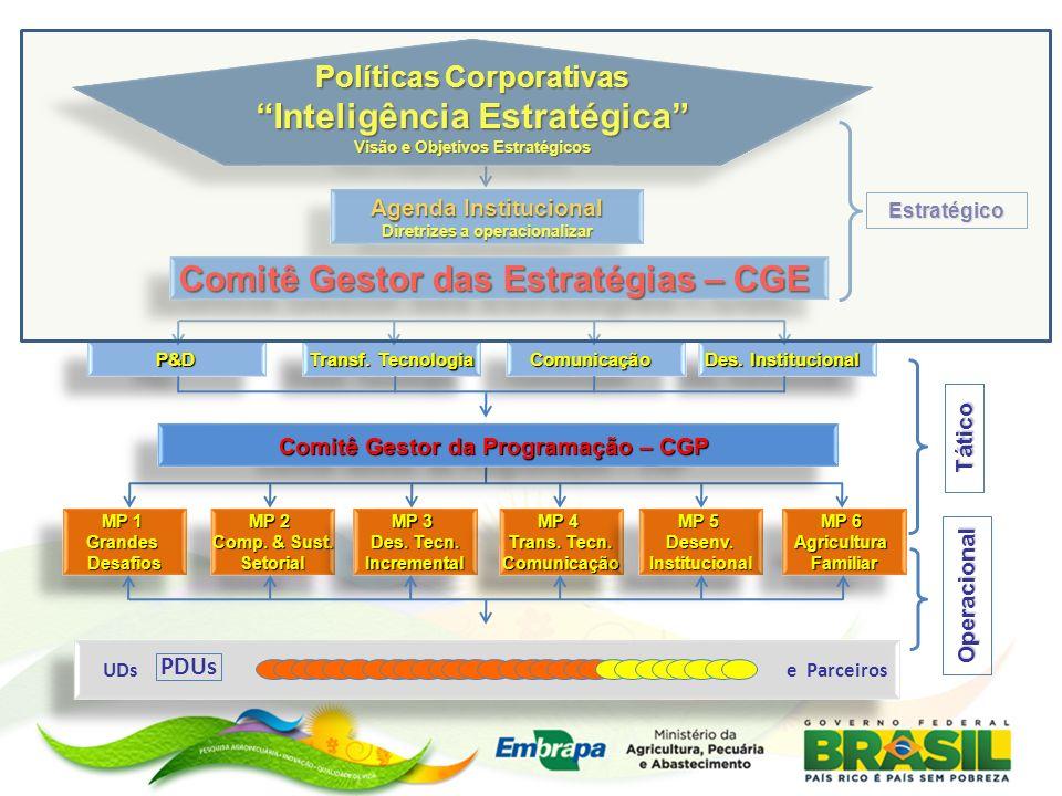 Inteligência Estratégica Comitê Gestor das Estratégias – CGE