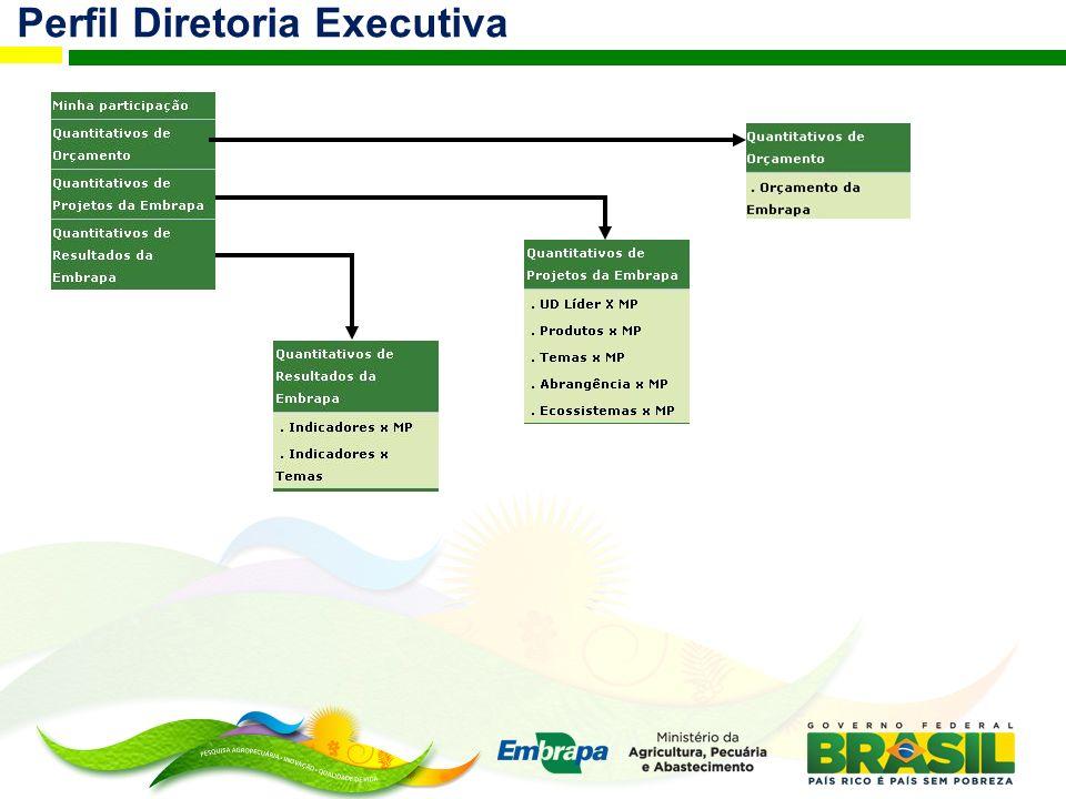 Perfil Diretoria Executiva