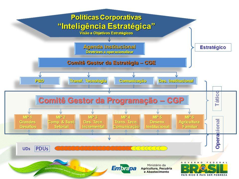Inteligência Estratégica Comitê Gestor da Programação – CGP